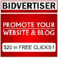 bidtiser Advertise