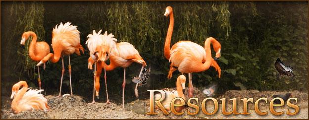 resources Resources